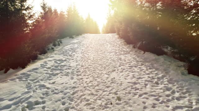 Aerial view in sundown winter mountain video