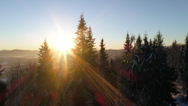 vídeos de stock, filmes e b-roll de vista aérea em montanha do inverno do nascer do sol - ucrânia
