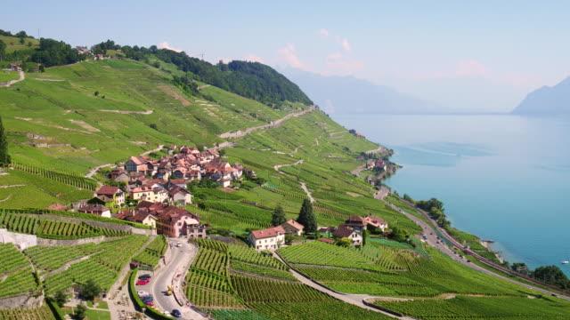aerial view lavaux vineyard - szwajcaria filmów i materiałów b-roll