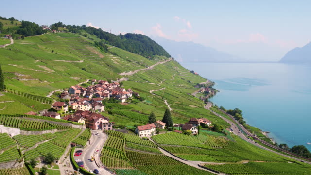 vídeos de stock e filmes b-roll de aerial view lavaux vineyard - suíça