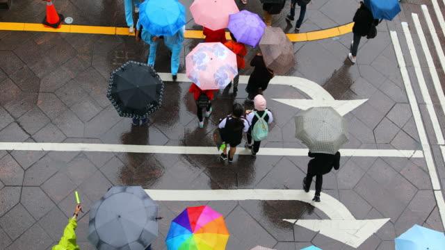 vídeos de stock e filmes b-roll de aerial view looking down on crowd of people walking with umbrellas - guarda chuva