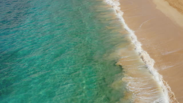 Aerial view of a beach paradise Aerial view of shorebreak on a sunny beach with deep blue ocean water, amazing coastlines pacific islands stock videos & royalty-free footage