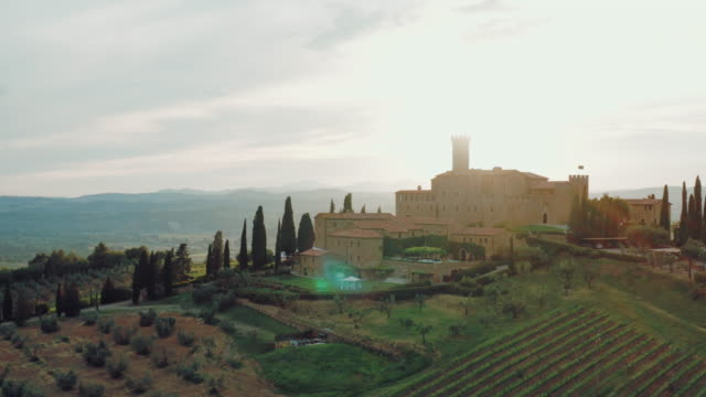 Aerial view of a beautiful small town in Tuscany surrounded by vineyards and a beautiful view.