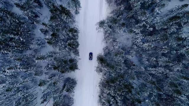 vídeos de stock e filmes b-roll de aerial view of a car driving in the snowy forest in estonia. - estónia