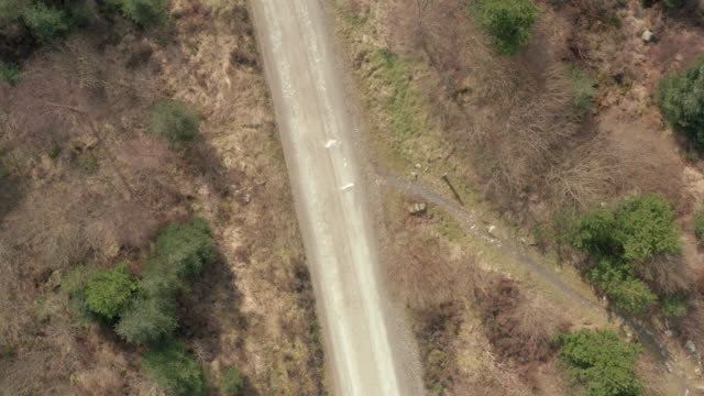 Aerial view of a dirt road in an area of Scottish forest in Dumfries and Galloway video