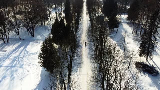 vídeos de stock, filmes e b-roll de vista aérea de um drone voando sobre o parque de inverno. - multicóptero