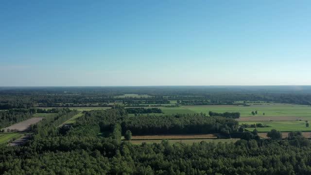 luftaufnahme einer flachen landschaft mit wäldern, wiesen und feldern - aerial view soil germany stock-videos und b-roll-filmmaterial