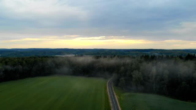 flygfoto av en dimmig skog och en landsväg i fält med grön sädesslag - städsegrön växt bildbanksvideor och videomaterial från bakom kulisserna