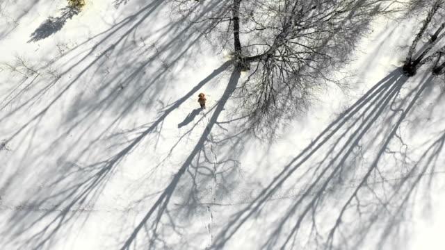 vídeos de stock, filmes e b-roll de a vista aérea de um ser humano anda joga a floresta do inverno - bétula