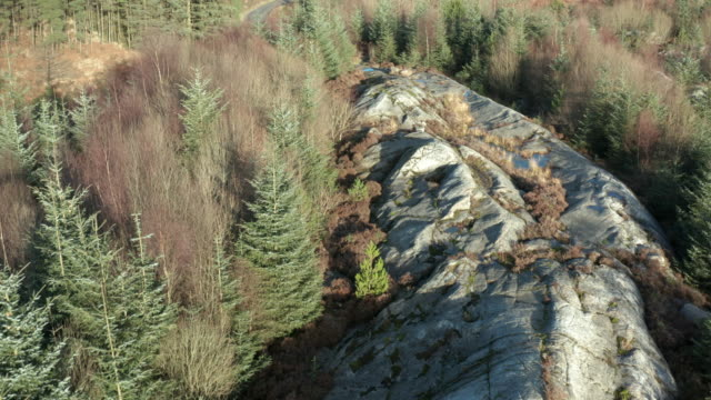 Aerial view of a large outcrop of granite in an area of Scottish forest in Dumfries and Galloway 4K drone footage of a large outcrop of granite in an area of fir tree forest in Dumfries and Galloway, south west Scotland. The rock is a popular obstacle for mountain bikers who visit the area dumfries and galloway stock videos & royalty-free footage