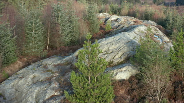 Aerial view of a large outcrop of granite in an area of Scottish forest in Dumfries and Galloway 4K drone footage of a large outcrop of granite in an area of fir tree forest in Dumfries and Galloway, south west Scotland. The rock is a popular obstacle for mountain bikers who visit the area galloway scotland stock videos & royalty-free footage