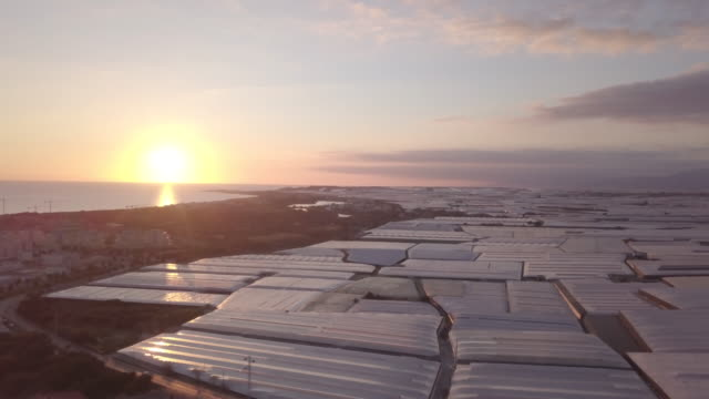 aerial view of a modern agricultural greenhouse aerial view of a modern agricultural greenhouse at sunset cycle vehicle stock videos & royalty-free footage