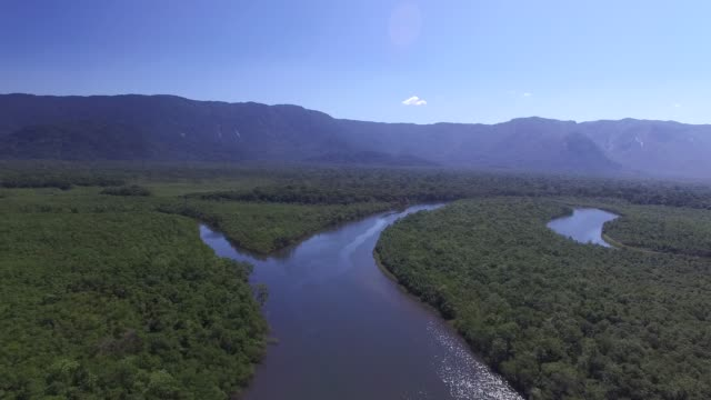 Aerial View of a Rainforest in Brazil video