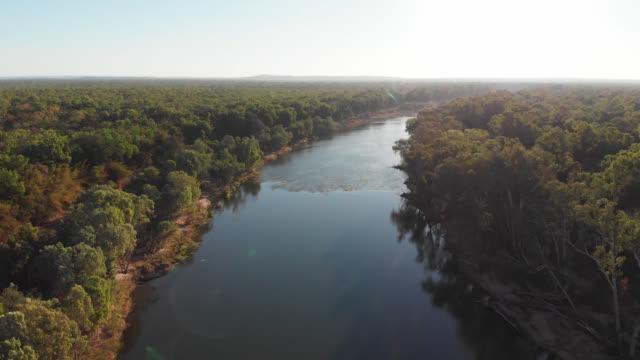 緑豊かな森、ダーウィン、オーストラリアの真ん中に川の航空写真 - オーストラリア点の映像素材/bロール