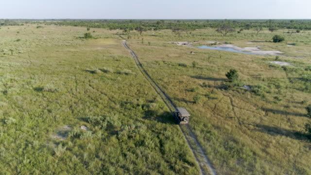 Aerial view of a safari vehicle driving through the bush of the Okavango Delta video