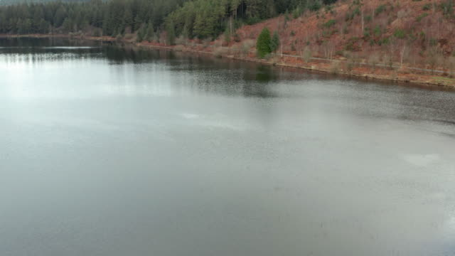 Aerial view of a Scottish loch next to a forest on a dull overcast spring day video