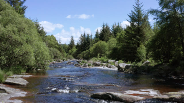 Aerial view of a small Scottish river in a forest 4K drone footage of a small Scottish river in a remote rural setting galloway scotland stock videos & royalty-free footage