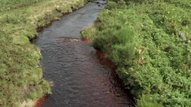Aerial view of a small Scottish River 4K drone footage of a small Scottish river in a remote rural setting dumfries and galloway stock videos & royalty-free footage