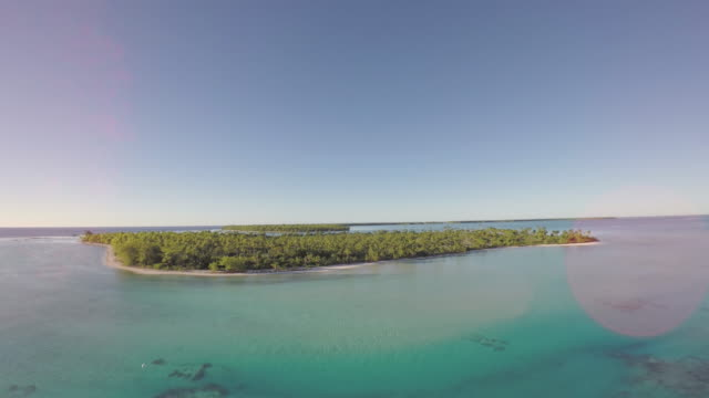 Aerial view of a tropical island and palm tree - Tetiaroa, Tahiti, French Polynesia video