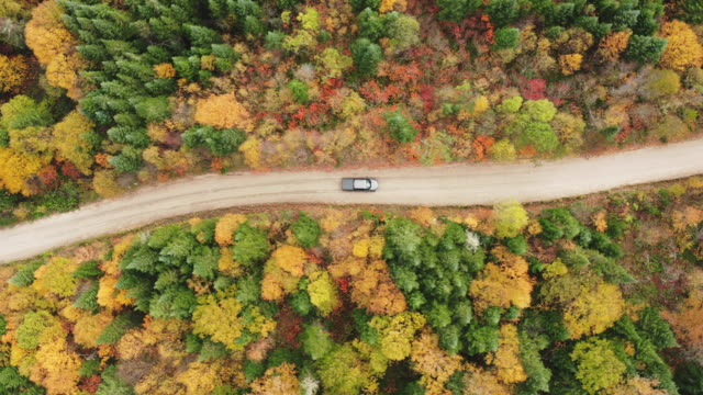 vídeos de stock e filmes b-roll de aerial view of a vehicle on road leading trough beautiful colorful autumn forest in sunny fall - passagem de ano