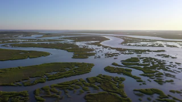 Aerial view of a wetlands Aerial view of a wetlands before sunset in the south of USA. wetland stock videos & royalty-free footage