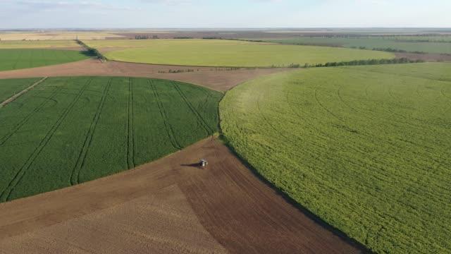 veduta aerea del settore agricolo sotto forma di cerchi - ucraina video stock e b–roll