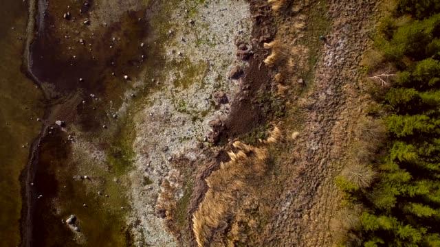 luftaufnahme der algenblüte im meer auf die küste von vormsi insel in estland. - ostsee stock-videos und b-roll-filmmaterial
