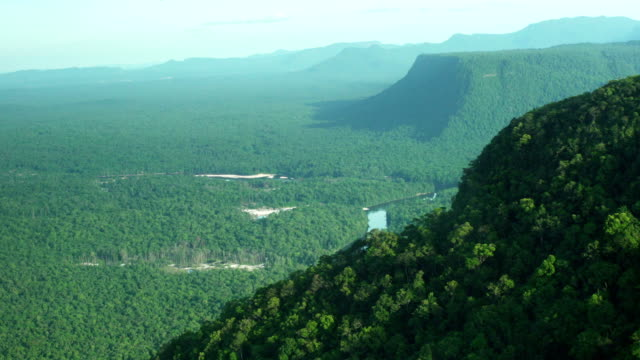 Aerial view of Amazon Forest. Tropical landscape during sunny day video