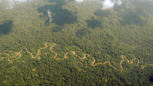 Aerial view of Amazon Rainforest video