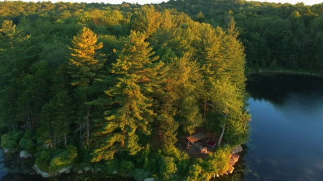 Aerial view of an Adirondack Lean-to Campsite in the Mountains. video