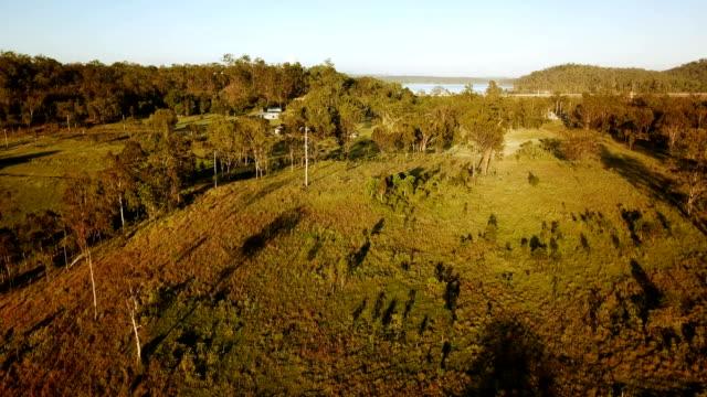 aerial view of australian savannah - równina filmów i materiałów b-roll