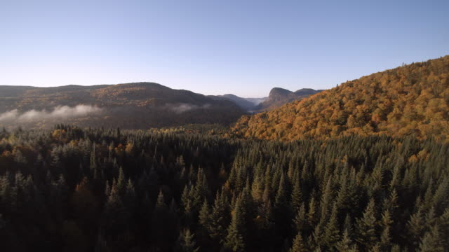 Aerial View of Autumn Landscape Nature, Quebec, Canada video