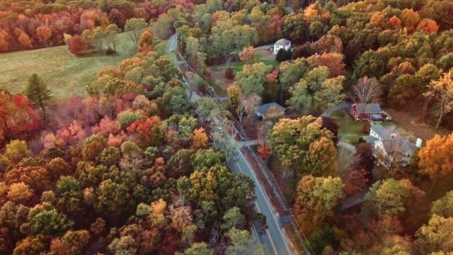 flygbild av höst träd i skymningen i new england - massachusetts bildbanksvideor och videomaterial från bakom kulisserna