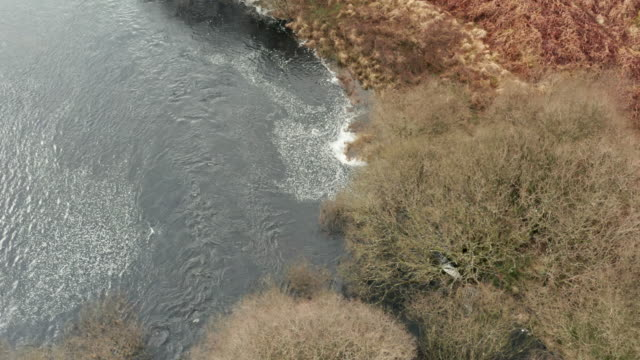 Aerial view of bare deciduous trees next to a Scottish river on a dull overcast spring day