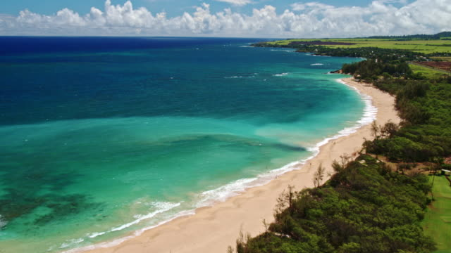 Aerial View of Beach in Hawaii Aerial view flying over tropical coastline and beach in Hawaii oahu stock videos & royalty-free footage