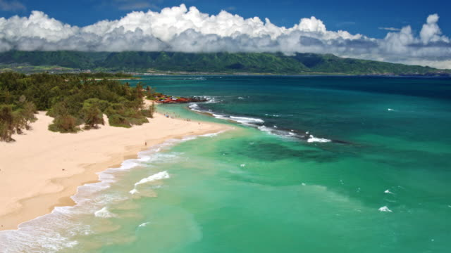 Aerial View of Beach in Hawaii video