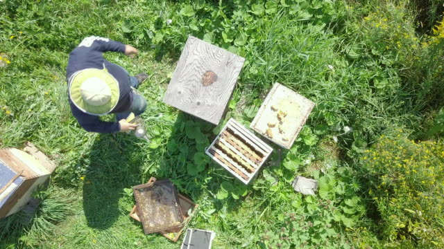 Aerial View of Beekeeper at Work video