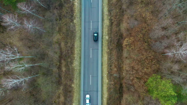 widok z lotu ptaka na czarny samochód jadący po drodze krajowej w lesie. kinowy dron nakręcony nad żwirową drogą w lesie sosnowym - podążać za czynność ruchowa filmów i materiałów b-roll