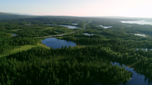 aerial view of blue lakes and green forests on a sunny summer day in finland. - jezioro filmów i materiałów b-roll