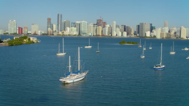 Aerial view of boats in bay Miami video
