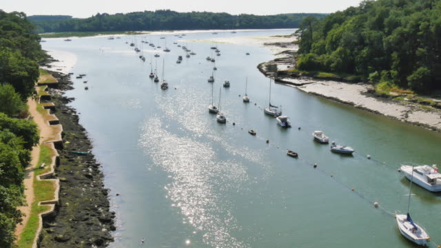 aerial view of boats moored in the delta of river video