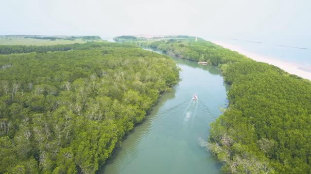 luftaufnahme von booten, die in flüssen entlang tropischer mangrovenwälder segeln - wassersparen stock-videos und b-roll-filmmaterial