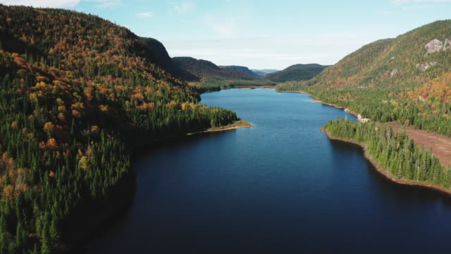 Aerial View of Boreal Nature Forest and Lake in Autumn, Quebec, Canada