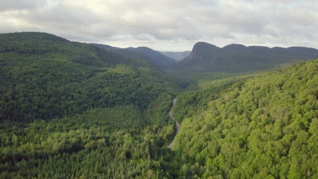 Aerial View of Boreal Nature Forest and Mountain in Summer video