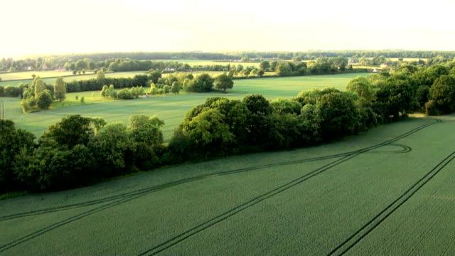 Luftaufnahme von Buckinghamshire Landschaft – Video