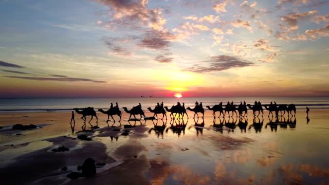 在澳大利亞布魯姆的電纜海灘鳥瞰駱駝 - 旅遊業 個影片檔及 b 捲影像