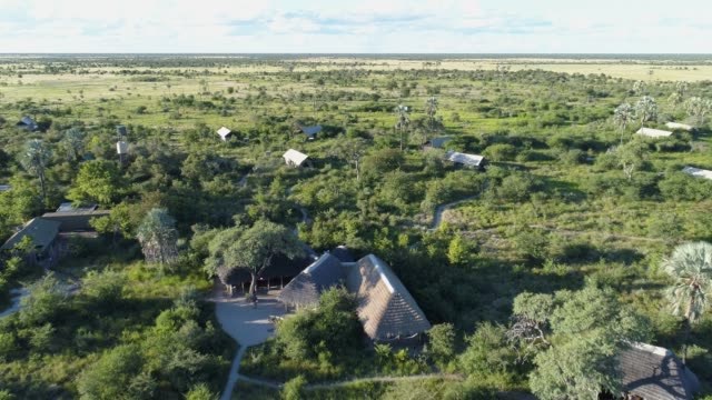 4K aerial view of Camp Kalahari on the Makgadikgadi Pans, Botswana 4K aerial view of Camp Kalahari on the Makgadikgadi Pans, Botswana botswana stock videos & royalty-free footage