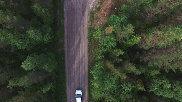 flygfoto över bil körning i pinjeskog. drone sköt efter grusväg i skogen - pine forest sweden bildbanksvideor och videomaterial från bakom kulisserna