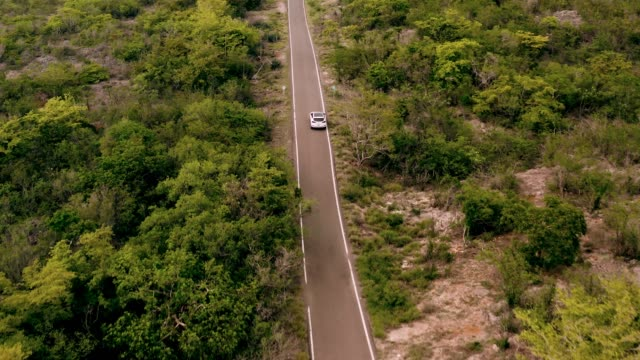 Aerial view of car driving in remote location 4K Aerial shot of automobile going trough a park reservation puerto rico stock videos & royalty-free footage