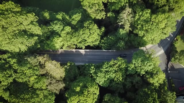 Aerial View of Cars and Cyclists Going Over a Bridge in the Enniskerry Woodland, Ireland